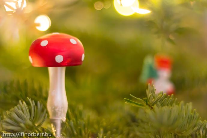 Karácsonyi gomba